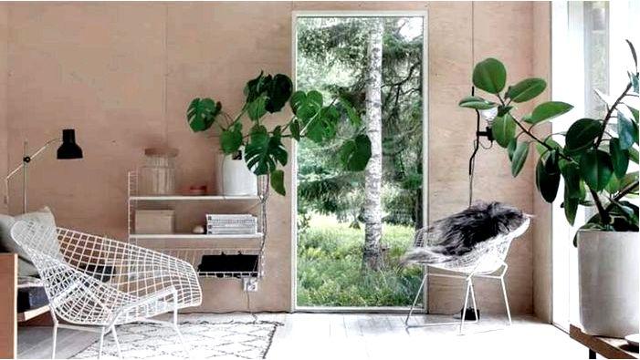Использование природных элементов в интерьере дома